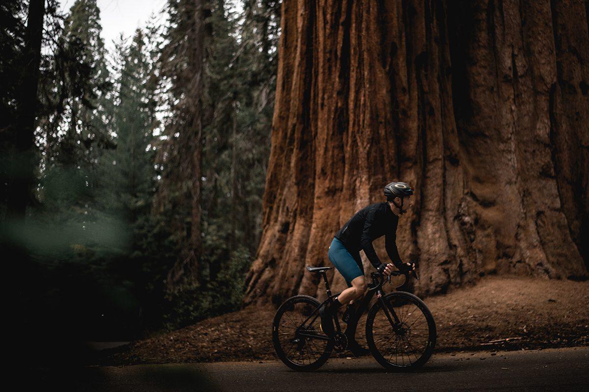 fizik-Day2-Sequoia-72